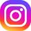 instagram icon 45x45